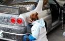 Chłopak pozwolił dziewczynie pomalować wóz