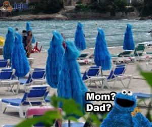 Ciasteczkowy Potwór odnalazł rodziców