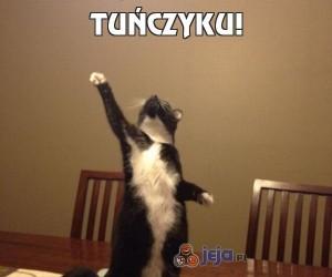 Tuńczyku!
