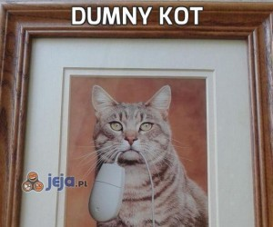Dumny kot