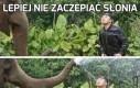 Lepiej nie zaczepiać słonia