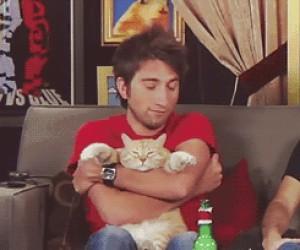 Kot ma dość Twoich tulasków