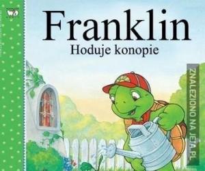 Franklin hodowca