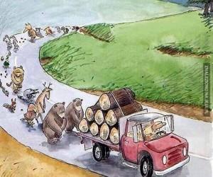 Pogrzeb drzew
