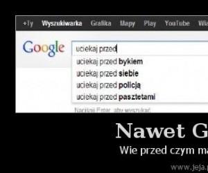 Nawet Google