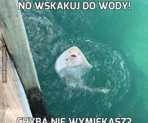 No wskakuj do wody!