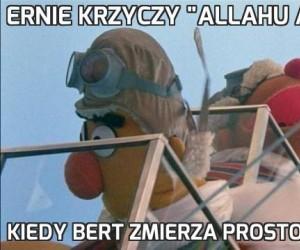 """Ernie krzyczy """"Allahu Akbar"""""""