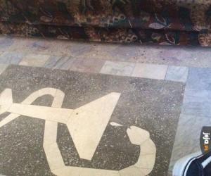 Ten wąż w szpitalu wygląda dość dziwnie...