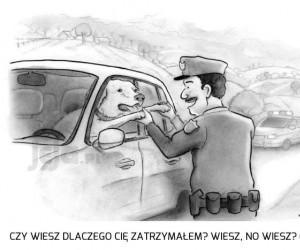 A kto jest takim grzecznym kierowcą, no kto?