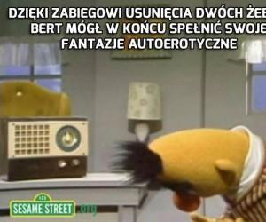 Bert nareszcie spełniony