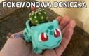 Pokemonowa doniczka