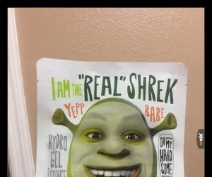 Od teraz możesz zostać prawdziwym Shrekiem!