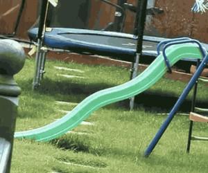 Szaleństwo psa na placu zabaw