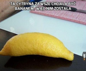 Ta cytryna zawsze chciała być bananem, więc nim została
