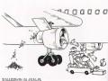 Samobójstwa zajączka: Zajączek w samolocie