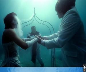 Podwodny ślub, ta?