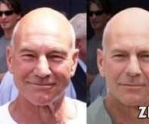 Ewolucja twarzy