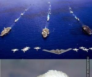 Tyle demokracji na jednym zdjęciu