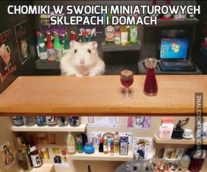 Chomiki w swoich miniaturowych sklepach i domach
