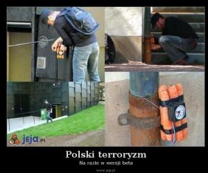 Polski terroryzm