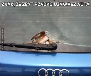 Znak, że zbyt rzadko używasz auta
