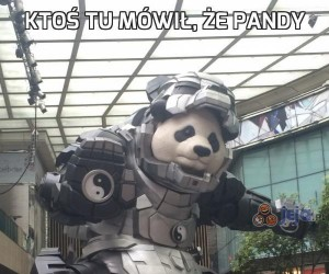 Ktoś tu mówił, że pandy