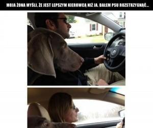 Mąż i żona za kierownicą