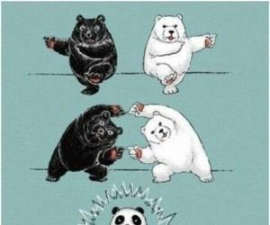 Krzyżówka niedźwiedzi