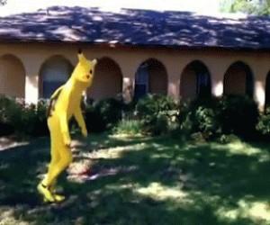 Pikachu naku*wia salto!