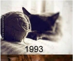 Nawet koty muszą iść z duchem czasu
