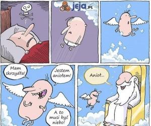 Trafił do nieba
