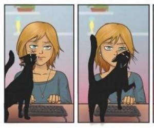 Z kotami nigdy nie wiadomo