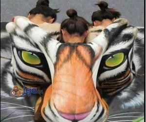 Tygrys wykreowany przez trzy dziewczyny