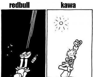 Kawa kontra Redbull
