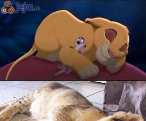 Król lew jak żywy