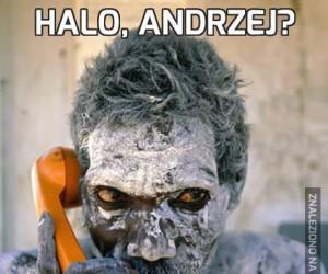 Halo, Andrzej?