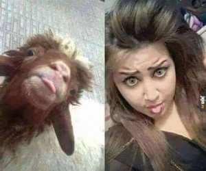 Jak bliźniaczki!