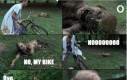 Rick, mój rower!