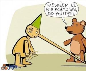 Pinokio i polityka