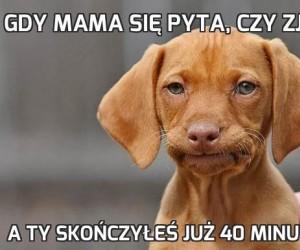 Gdy mama się pyta, czy zjadłeś