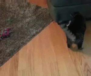Znajdę cię, ty mały gnojku!