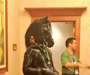Dobra, to ja będę czarnym koniem