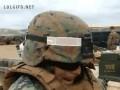 Żółw w wojsku