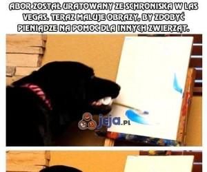 Pies, który maluje obrazy