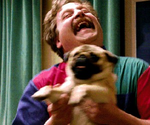 Kiedy widzę swojego psa po całym dniu w szkole