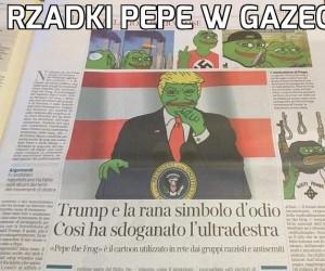 Rzadki Pepe w gazecie
