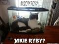 Ryby?
