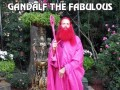 Gandalf the fabulous