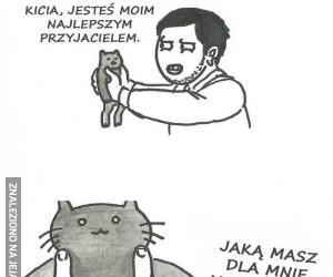 Serbskie koty to czyste zło