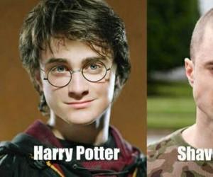 Metamorfoza Pottera